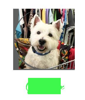 Meet_Sailor